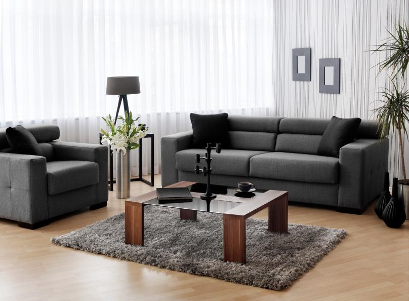 Contemporary Living Room Decorating Pictures   LoveToKnow