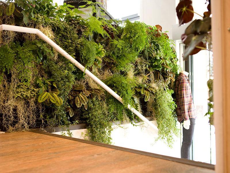 https://cf.ltkcdn.net/interiordesign/images/slide/198066-800x602-wall-of-plants-over-stairs.jpg