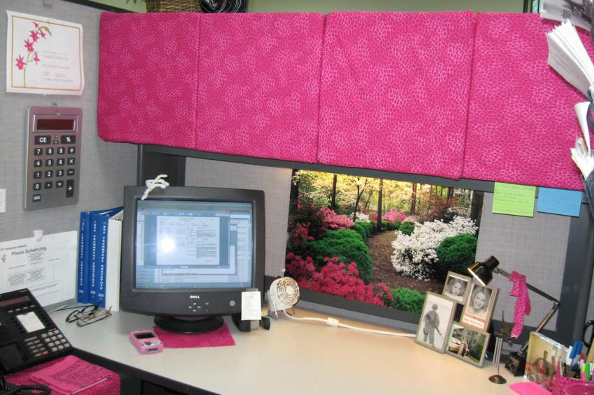 https://cf.ltkcdn.net/interiordesign/images/slide/209263-850x566-pinkcubicle.jpg