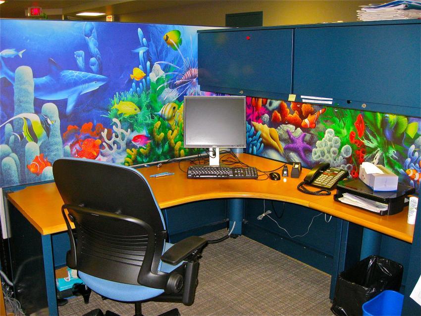 https://cf.ltkcdn.net/interiordesign/images/slide/210318-850x638-aquariumcubicle.JPG
