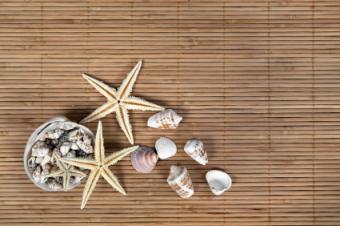 bamboo_shells.jpg