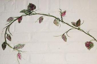 Stamped Vine Leaves