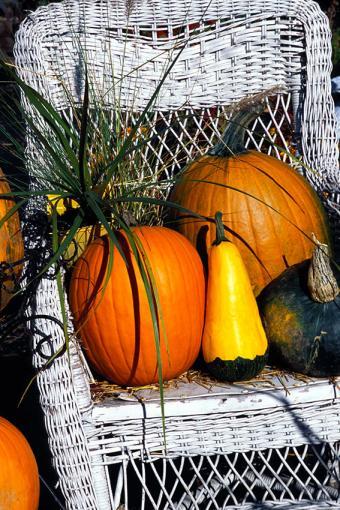 https://cf.ltkcdn.net/interiordesign/images/slide/189668-567x850-Chair-with-pumpkins-and-squash.jpg