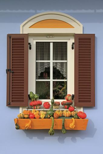 https://cf.ltkcdn.net/interiordesign/images/slide/189678-567x850-squash-in-planter-box-decoration.jpg