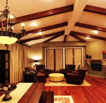 Dark and dramatic living room