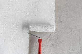 Painting a Rough Wall