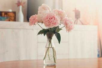 Vase of peonies on the Wooden living room table