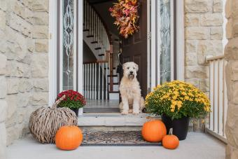 3 Lovely DIY Autumn Themes for Home Decorating