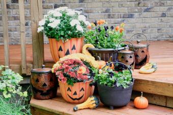 Create Flowerpot Pumpkins