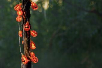 Pumpkin Branch Lights