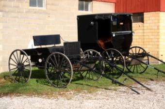 Amish wallpaper border