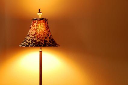 leopard lamp shade