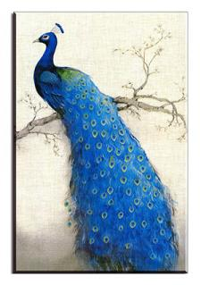 Peacock in a Tree Print