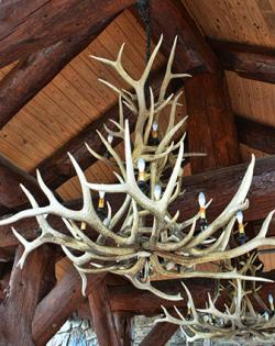 How to build antler chandeliers antler chandelier aloadofball Image collections