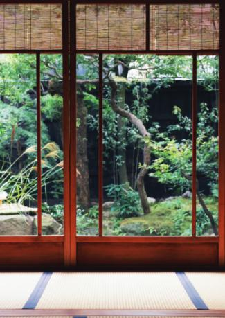 Windows with bamboo shades