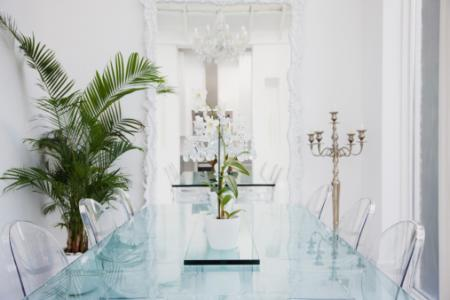 Tall plant in modern dining room