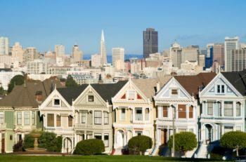 Painted_ladies2.jpg