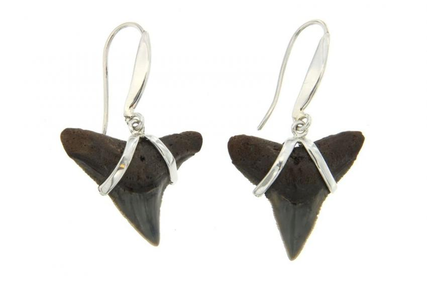 https://cf.ltkcdn.net/jewelry/images/slide/209583-850x567-Fossil-Earrings.jpg