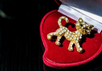 https://cf.ltkcdn.net/jewelry/images/slide/254155-850x595-cat_brooch.jpg