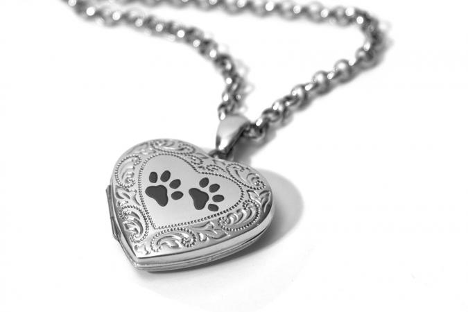 heart paw lockets fit print necklace pendants dog locket pin paws