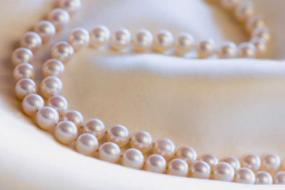 Photo of an Akoya pearl necklace