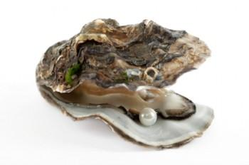 Pearl inside an open oyster