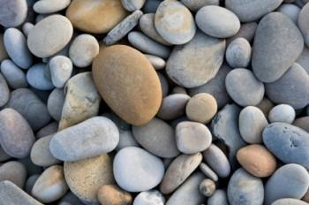 Close-up of beach stones