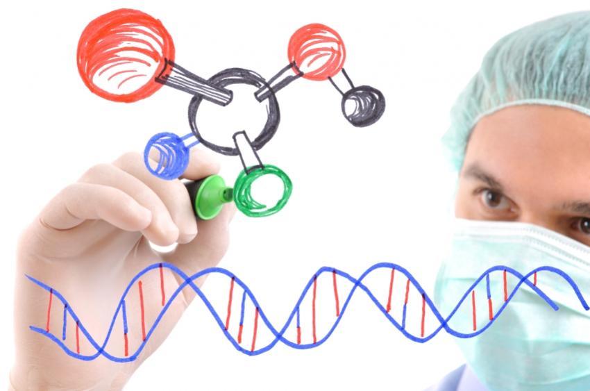 https://cf.ltkcdn.net/jobs/images/slide/33468-850x563-medical_research.JPG