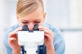 https://cf.ltkcdn.net/jobs/images/slide/131356-849x565r1-scientist_microscope.JPG