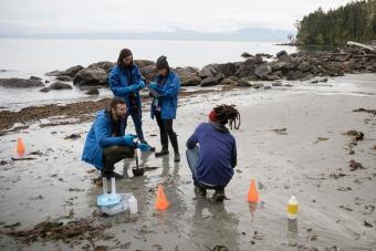 Marine biologists running tests at beach
