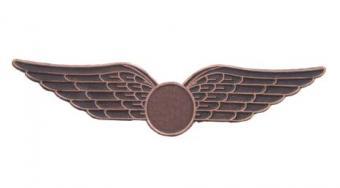 Flight Attendant Wings