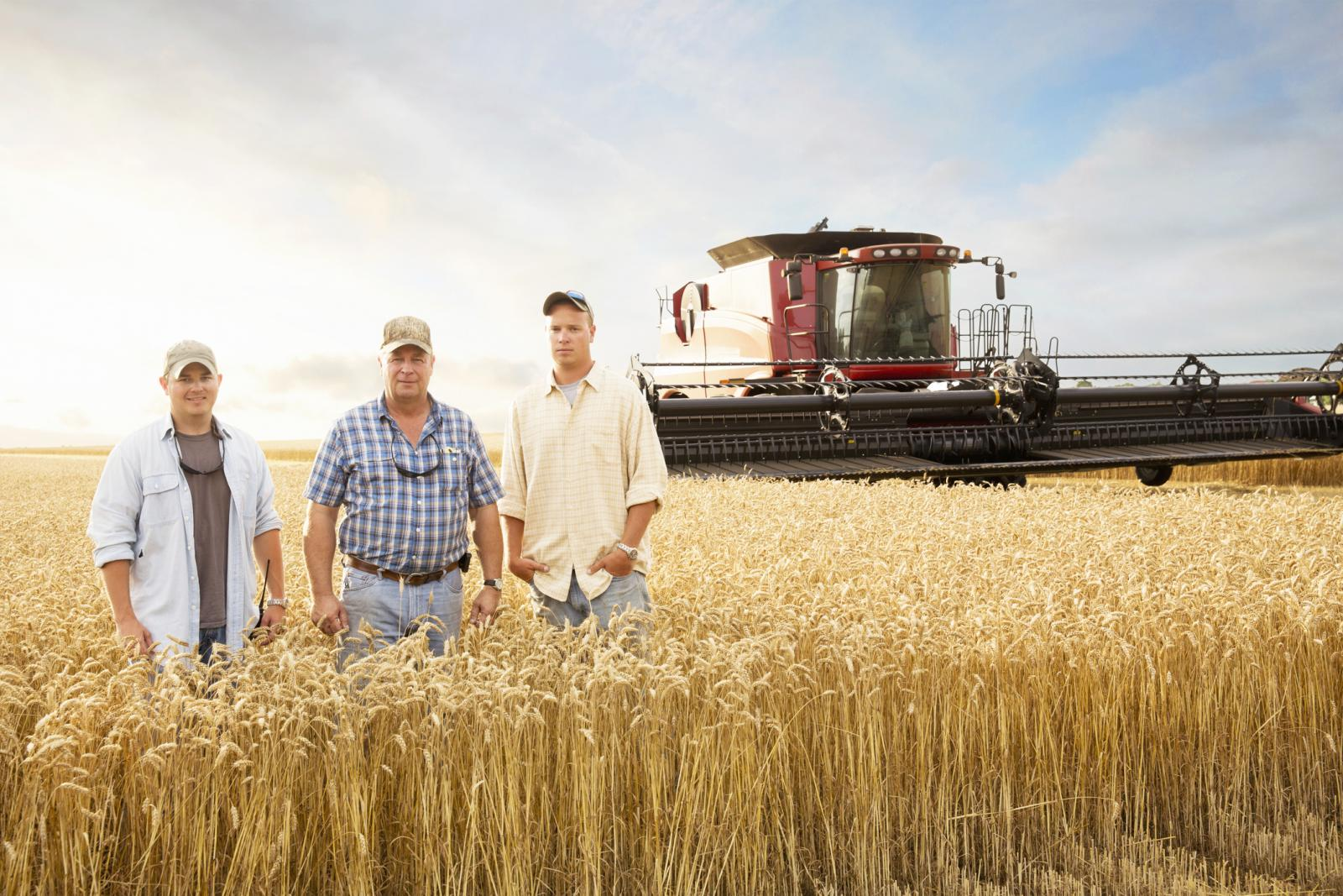 Two generations of farmers in wheat field