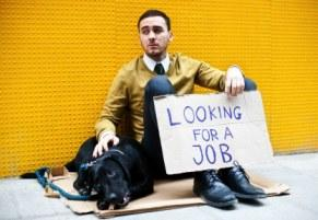 Unemployed Canadian looking for a job