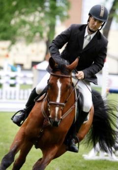 male horseback rider