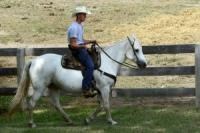 Do you find the idea of working on a ranch appealing?