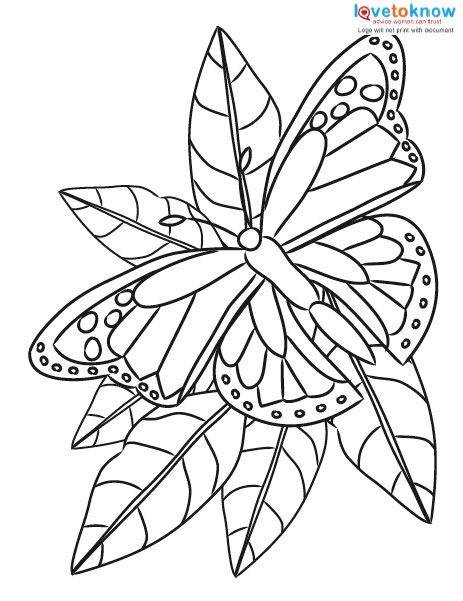 Free Erfly Coloring Printable Pages