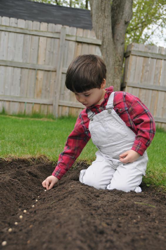 https://cf.ltkcdn.net/kids/images/slide/128112-565x850r1-Spring-Garden.jpg