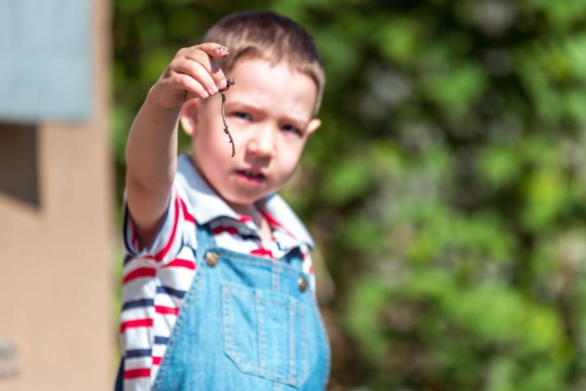 https://cf.ltkcdn.net/kids/images/slide/237825-850x567-boy-holding-up-worm.jpg