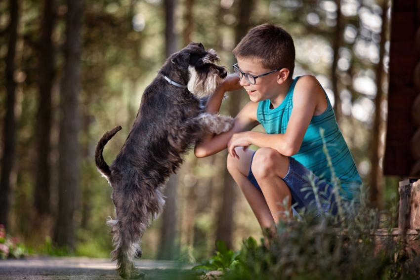 https://cf.ltkcdn.net/kids/images/slide/237832-850x567-boy-with-dog-outside.jpg