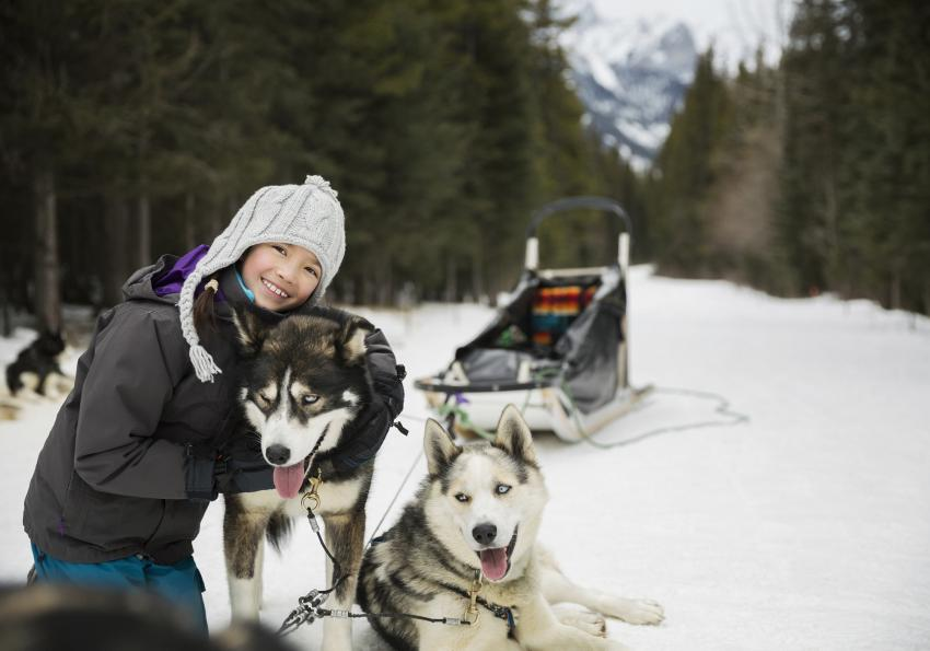 https://cf.ltkcdn.net/kids/images/slide/256235-850x595-12_Dog_Sledding.jpg