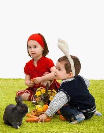 https://cf.ltkcdn.net/kids/images/slide/128110-611x786r1-Spring-Photos-Easter.jpg