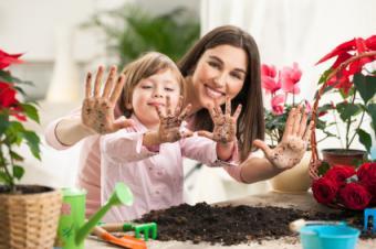 planting flowers inside