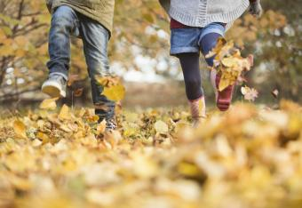Autumn Facts for Kids