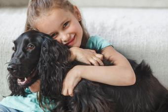 Types of Dog Games for Kids