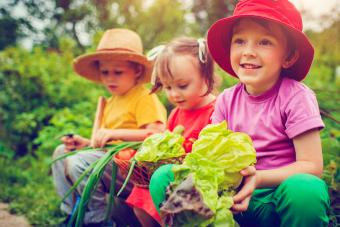 Garden Themes for Preschool Children