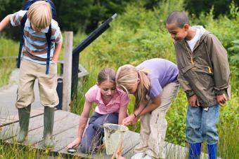 Children at nature reserve