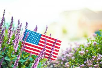 American flag in nature