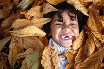 Boy lying in leaves, laughing, eyes closed, overhead view
