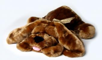 Types of Toy Dogs for Kids