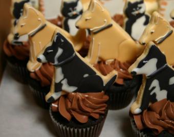 Dog cupcakes by Jeri Gottlieb
